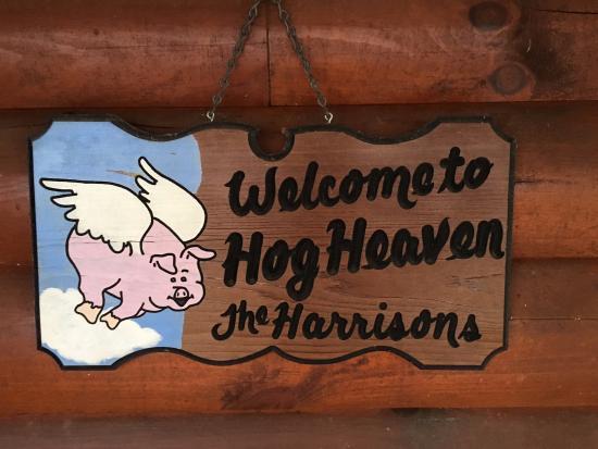 Hidden Mountain Resorts: Hog Heaven