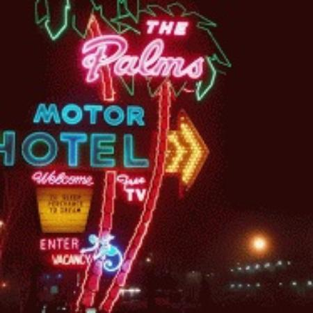 Palms Motel: Neon sign