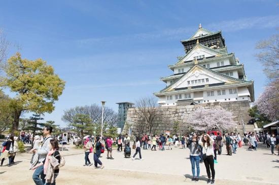 Osaka Castle In Cherry Blossom Season Picture Of Osaka