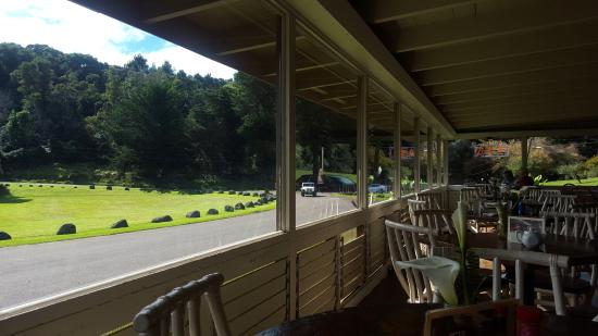 Kokee Lodge: View from Dining Room