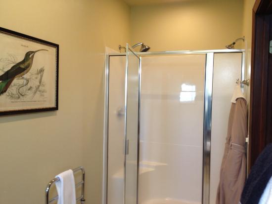 Sautee Nacoochee, Gürcistan: Dual head shower (rm8)