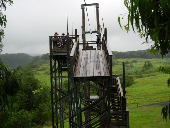 Skyline Eco Adventures - Akaka Falls Zipline Tour: The Backwards Launch
