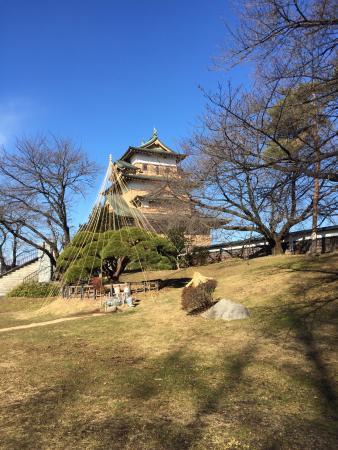 Takashima Castle: 天守閣
