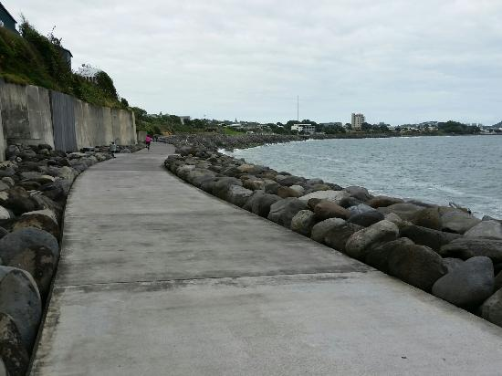 New Plymouth, Nueva Zelanda: 20160107_094632_large.jpg