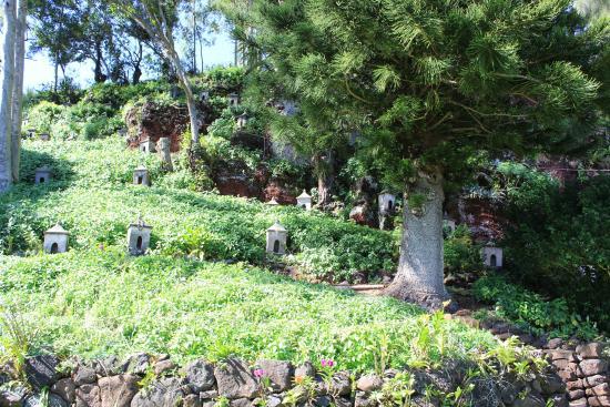 Kalaheo, Hawaje: Looking up at the 88 shrines.