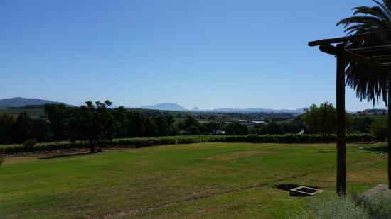 Oakleaf Lodge: View from the lodge of Table Mountain