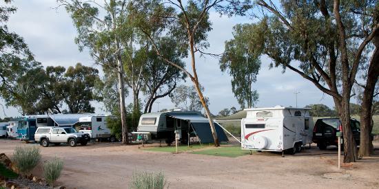 Paringa Caravan Park