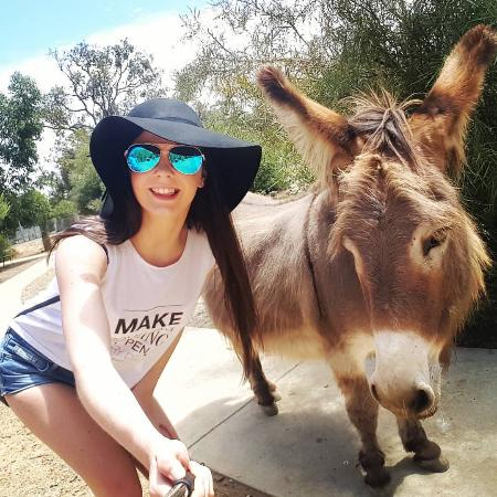 Byford, Avustralya: Donkey selfie
