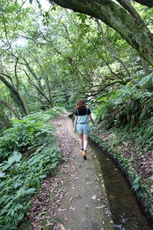 Ping Ding Gu Zun Hiking Trail