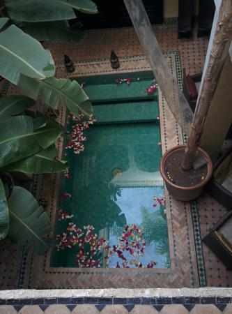 Riad Aguaviva: Living room