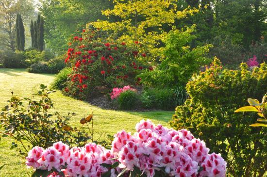 Ch teau de la folti re photo de parc botanique de haute bretagne le chatellier tripadvisor - Parc botanique de haute bretagne ...