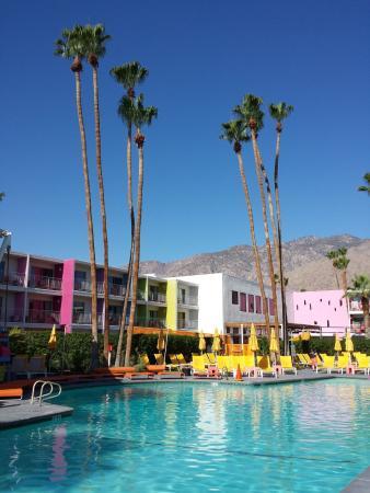 The Saguaro Palm Springs, a Joie de Vivre Hotel : Toller Pool im Innenhof