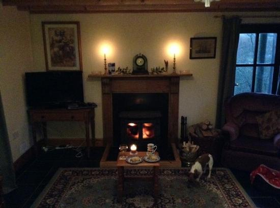 Llanllwni, UK: Mince pies and sausage rolls in front of the fire