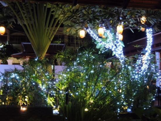 jardin d\'intérieur décoré pour Noël - Picture of Malis Cambodian ...