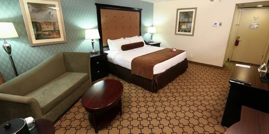 Crowne Plaza Oklahoma City: Single Bed Guest Room