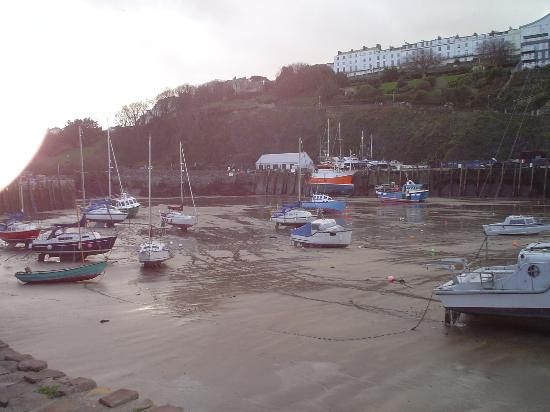 Ilfracombe, UK: The Harbour