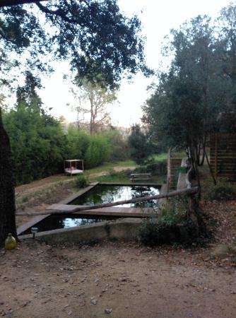Llica d'Amunt, İspanya: Vista de la piscina natural desde la cabaña