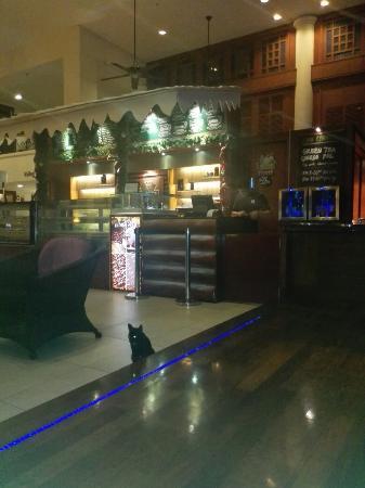 Holiday Inn Kuala Lumpur Glenmarie: IMG_20160101_231005_large.jpg