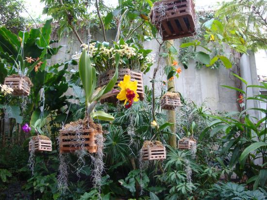 Foto Di Cleveland Botanical Garden Cleveland Tripadvisor
