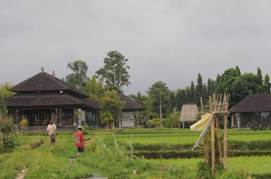 The Chedi Club Tanah Gajah, Ubud, Bali – a GHM hotel: View of grounds