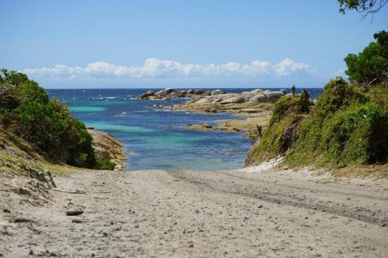 Ταζμανία, Αυστραλία: Pictures taken near Eddystone Point Lighthouse