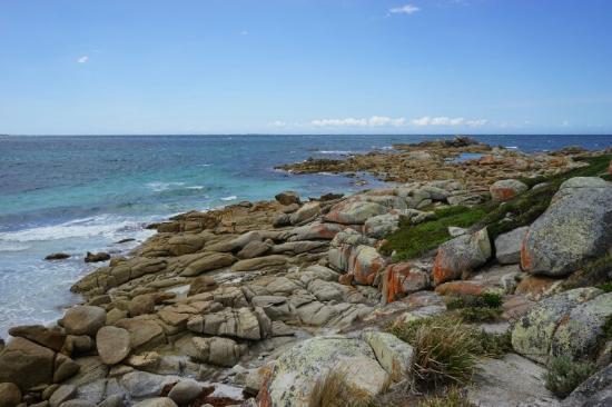 Tasmania, Australia: Pictures taken near Eddystone Point Lighthouse