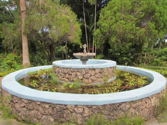 Shaw Park Gardens & Waterfalls: Shaw Park Gardens