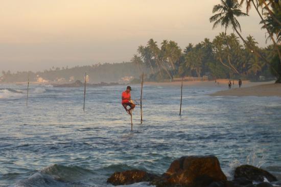 Sri Gemunu Beach Resort: 1030011_large.jpg