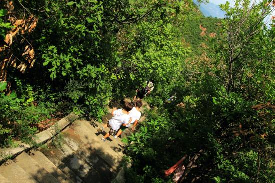 Jinshanling Great Wall : Great Wall of Jinshaling - sentiero in discesa
