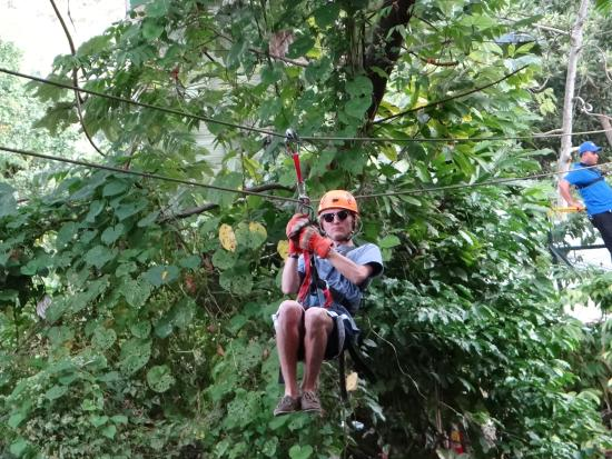 Canopy Adventure Zip Line Tours in the Dominican Tropical forest & in the Dominican Tropical forest - Picture of Canopy Adventure Zip ...