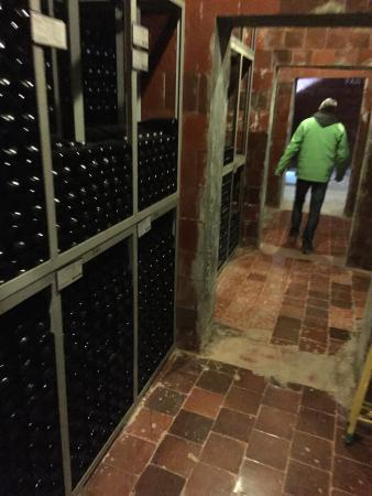 Barcelona Day Tours: Art Cava winery