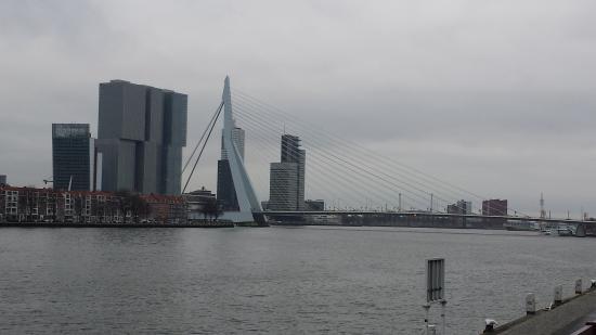 Erasmus Bridge: Ponte di Erasmo in lontananza
