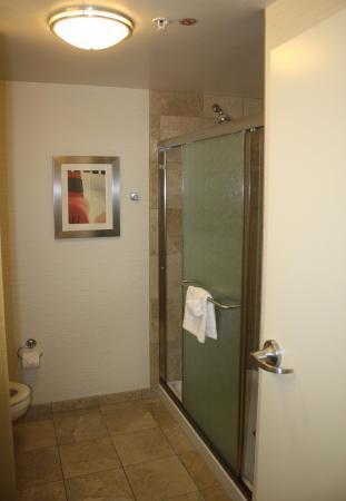 Hampton Inn & Suites Phoenix Chandler Fashion Center : No tub - double shower