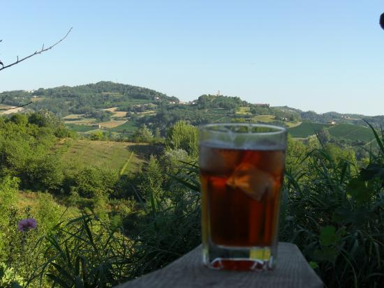 Calamandrana, Italia: Relax with a cold drink & enjoy the view.