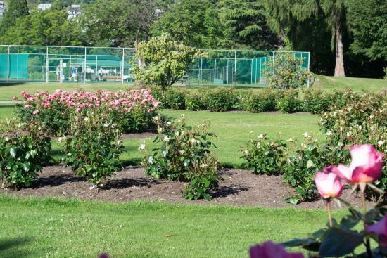 Vista de las canchas de tenis desde el jardín de rosas. - Picture of ...