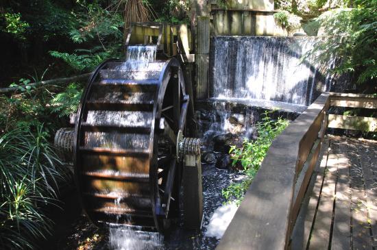 New Plymouth, Nueva Zelanda: A water wheel