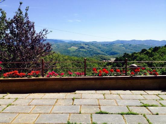 Agriturismo Piaggione di Serravalle: panorama