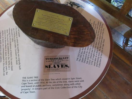 District Six Museum: slave tree