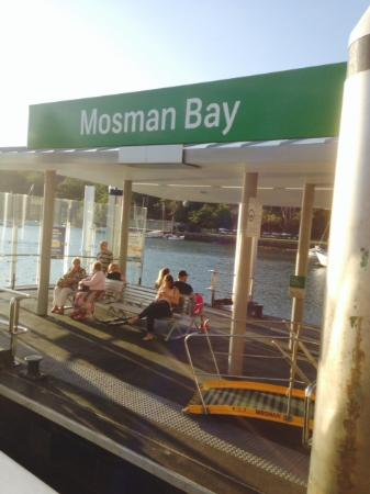 Cremorne Point to Mosman Bay Walk: Мосман бэй