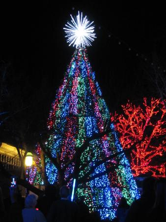The Audio Visual Christmas Tree At Night Picture Of Silver Dollar
