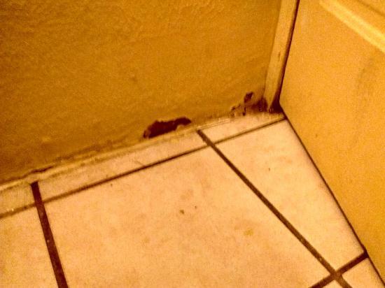 Motel 21: Mold in bathroom from exhaust fan being broken, bathroom cabinet, faulty conduit electricity, ce