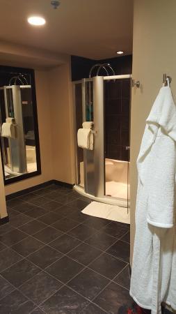 Sundara Inn and Spa: Shower area