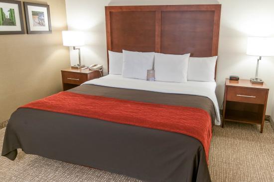 Comfort Inn Quantico: Guest Room
