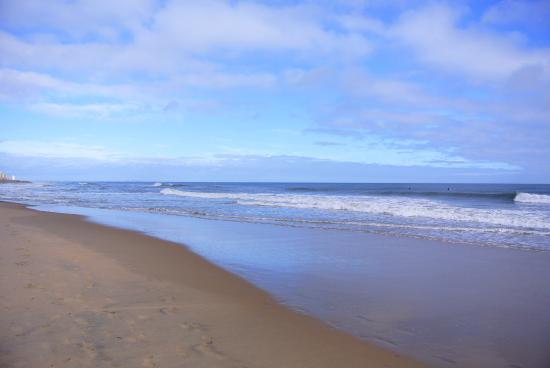 SpringHill Suites Virginia Beach Oceanfront: Beachfront view ...