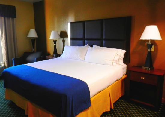 Holiday Inn Express Hinesville King Standard
