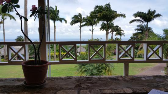 Ottley's Plantation Inn: View from dining room