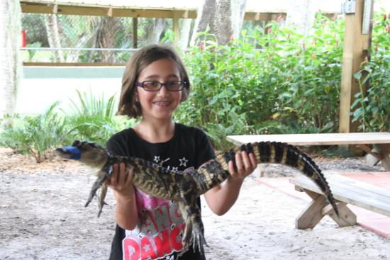 Palmdale, Флорида: At the lecture everyone gets to hold a gator