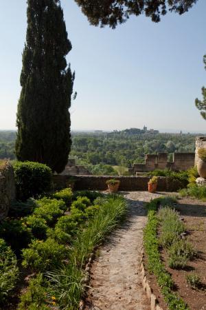 Jardins de l 39 abbaye saint andre villeneuve les avignon Entretien jardin villeneuve les avignon