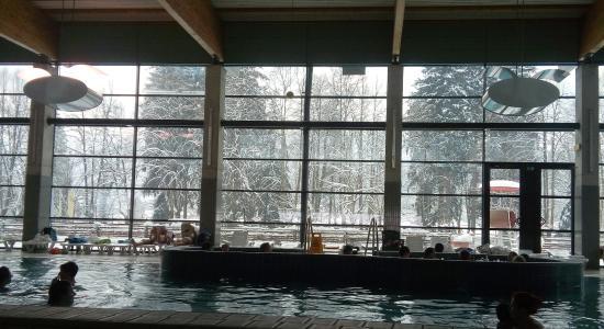 Hotel Balnea Superior: Il bosco innevato visto dalla piscina interna