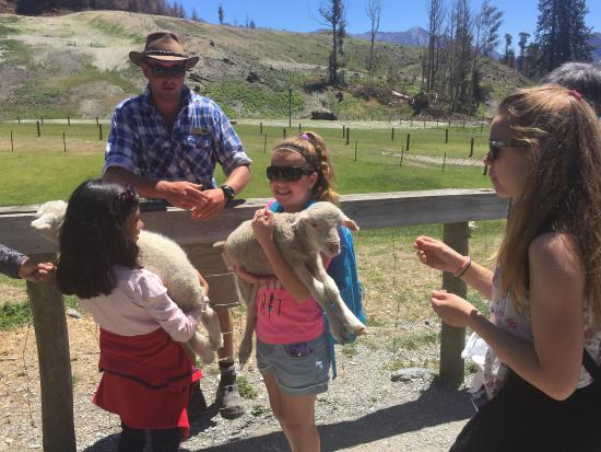 Queenstown, New Zealand: The kids favorite part.